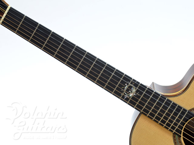 JACK SPIRA GUITARS: JS-2C Sea Dragon (4)