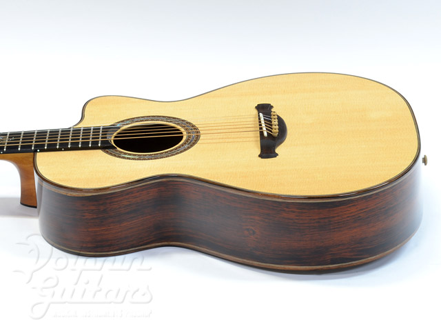 JACK SPIRA GUITARS: JS-2C Sea Dragon (2)