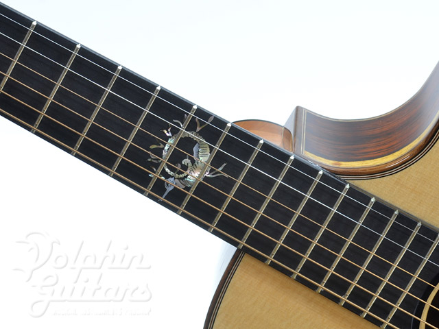 JACK SPIRA GUITARS: JS-2C Sea Dragon (8)