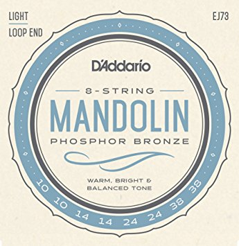 D'Addario EJ73 Phosphor Bronze Light