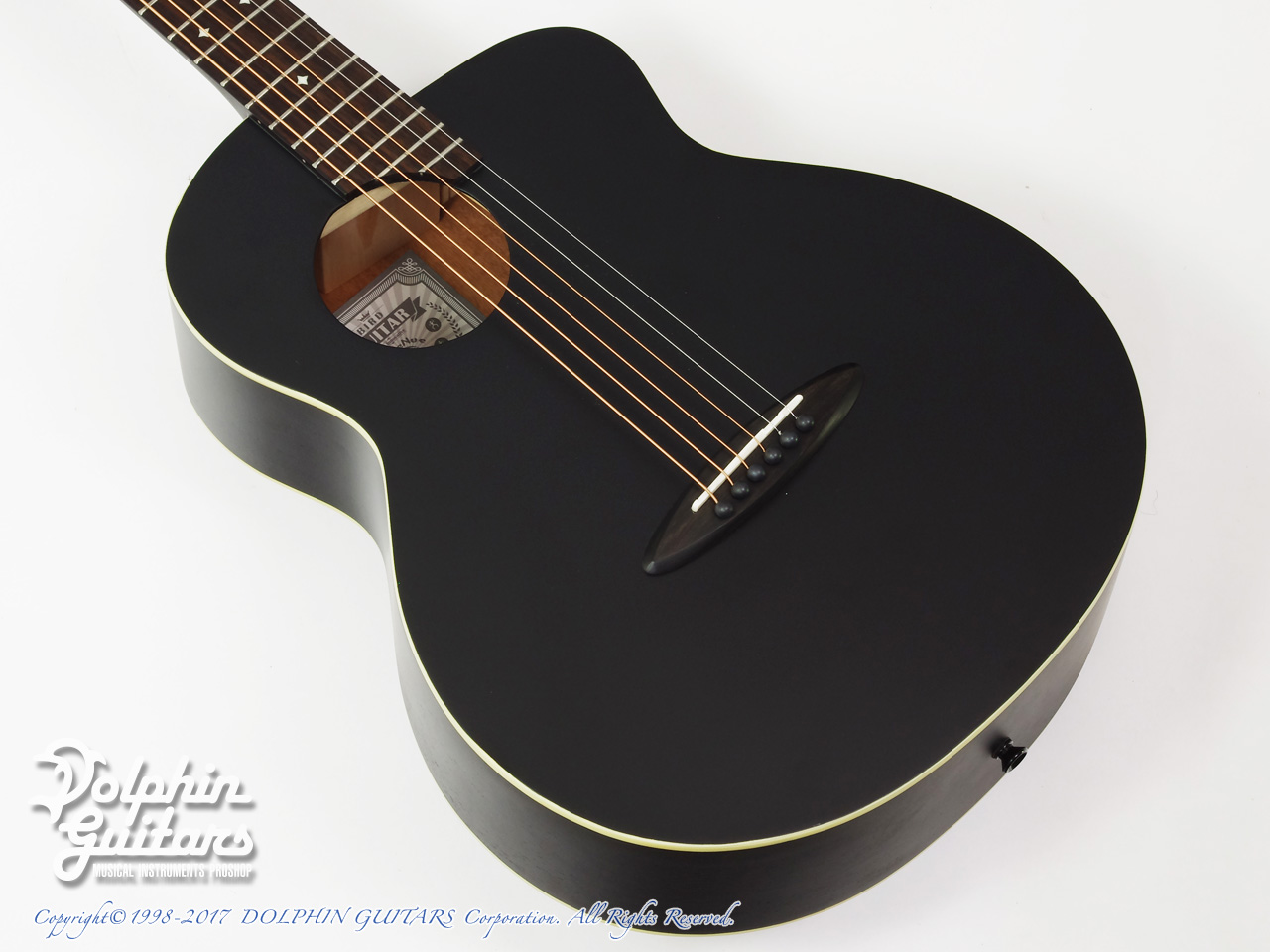 aNueNue:ML16 Lumiblack Bird