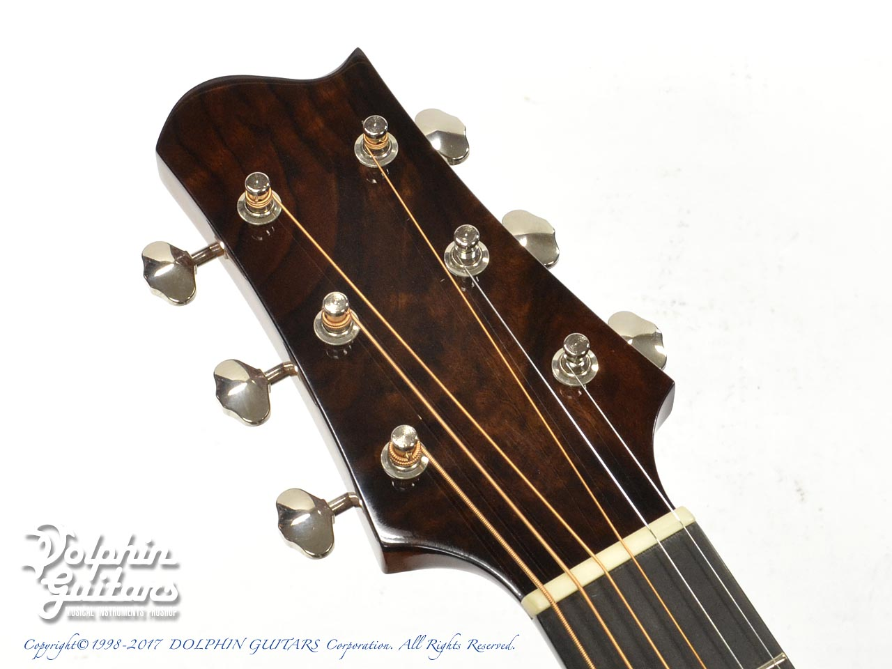 FLY ROBIN (Luthier's Design Project): Grace (6)