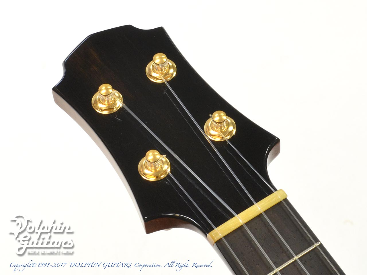 NOB ACOUSTIC GUITAR: Concert Custom  (7)
