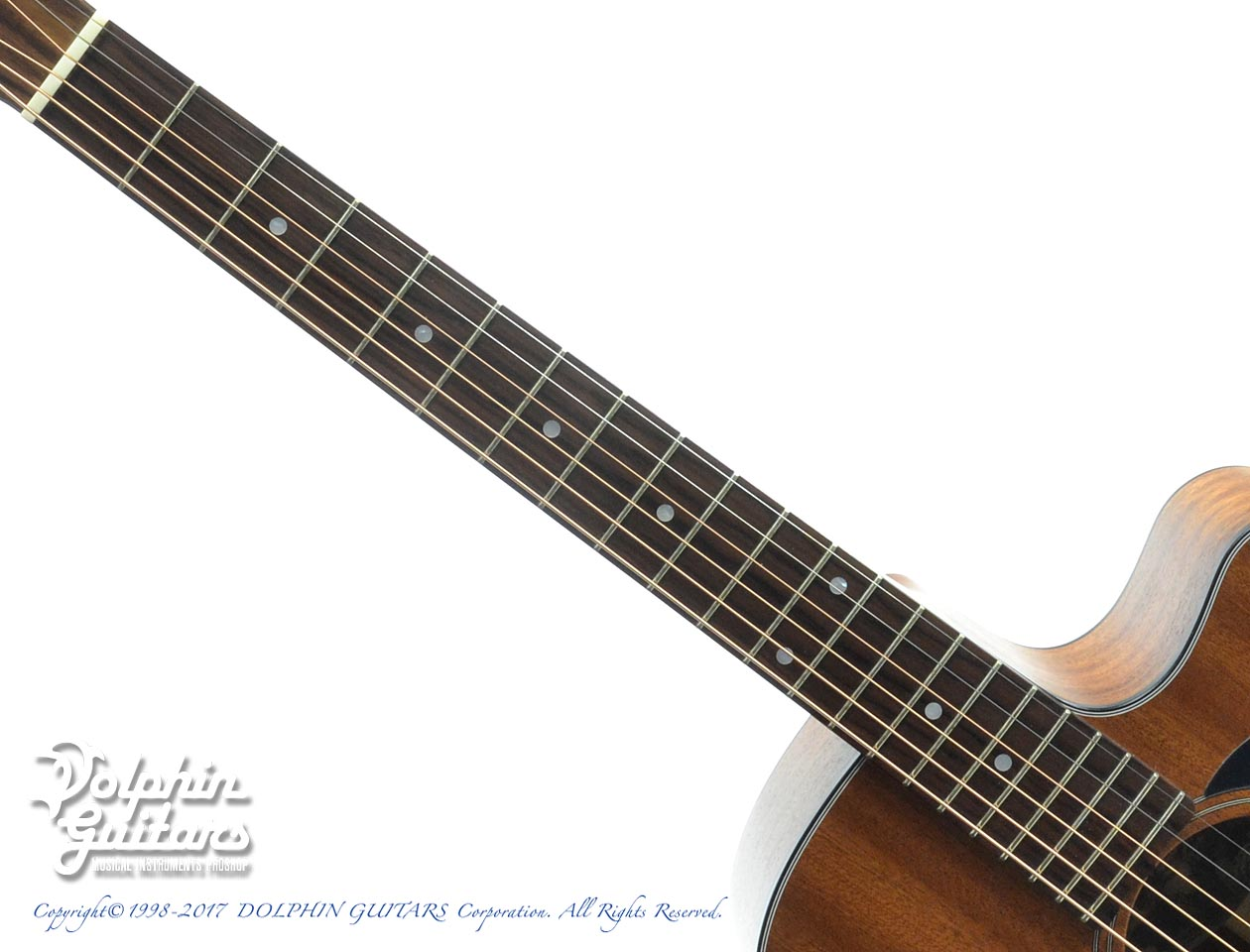 MATON: M808C (All Sapele) (4)