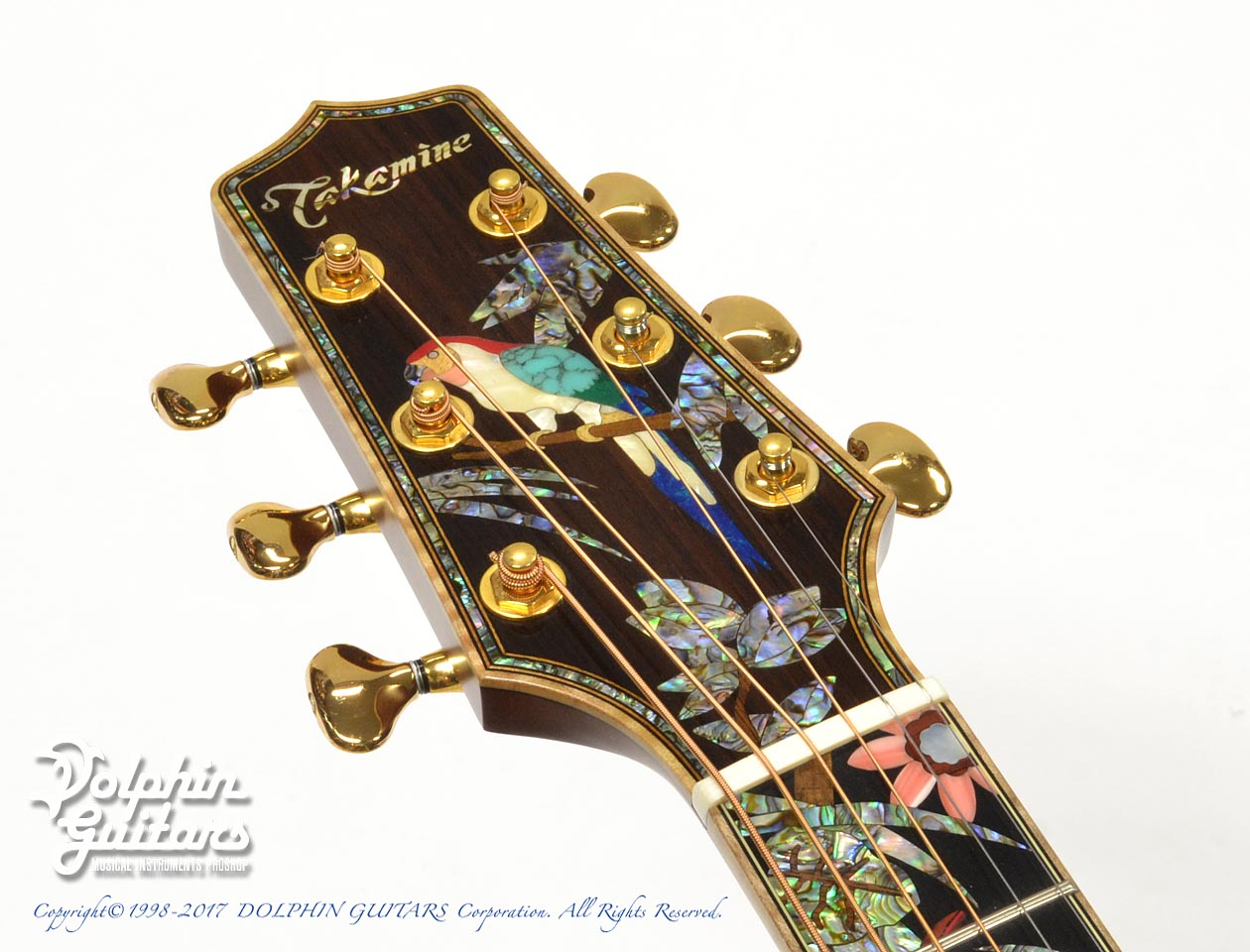 TAKAMINE: SAD-Birds Deluxe (Hawaiian Koawood) (6)
