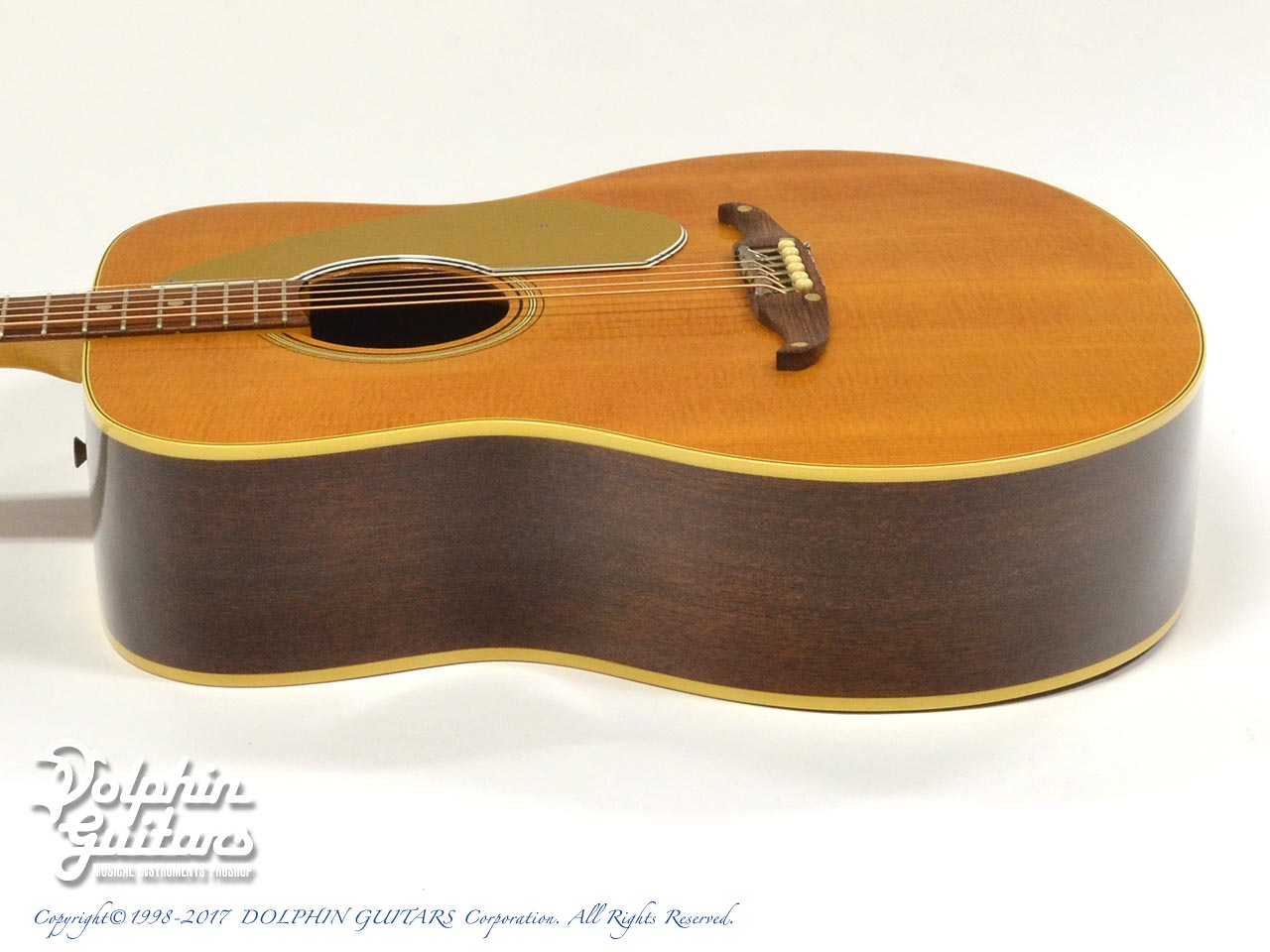FENDER USA: PALOMINO (2)