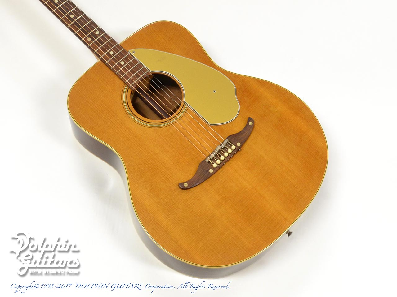 FENDER USA: PALOMINO (1)