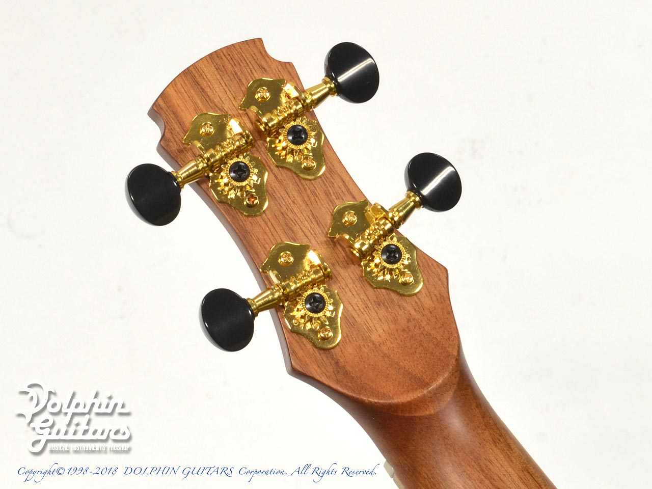 MAESTRO GUITARS: UC-CO (8)
