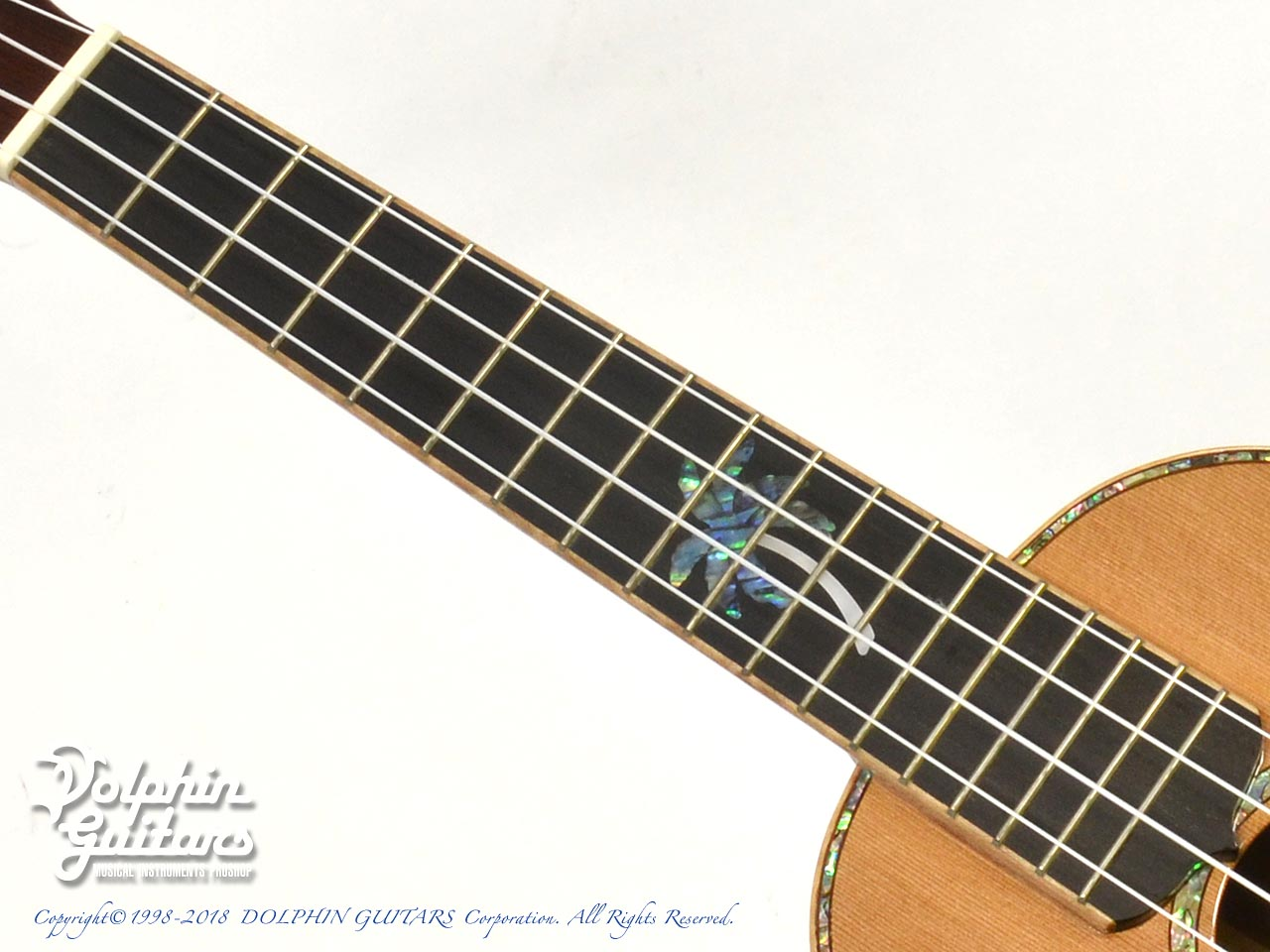 MAESTRO GUITARS: UC-CO (5)