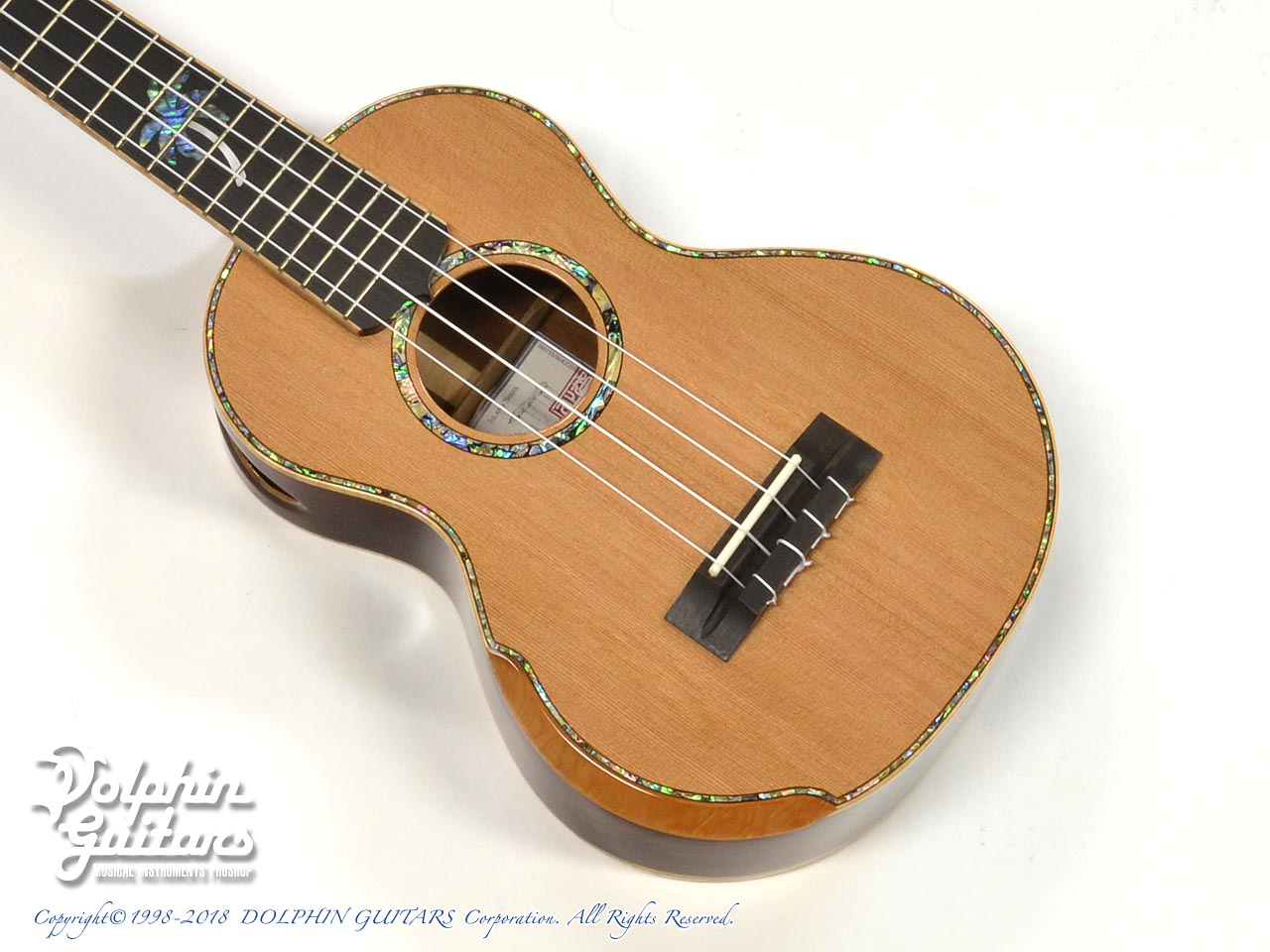 MAESTRO GUITARS: UC-CO (1)