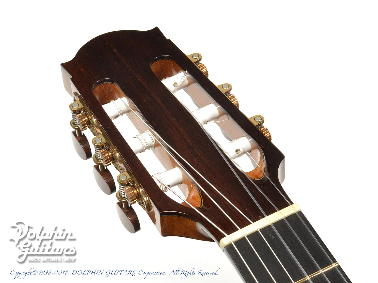 WATER ROAD GUITARS: Pulchra (Jacaranda) (6)