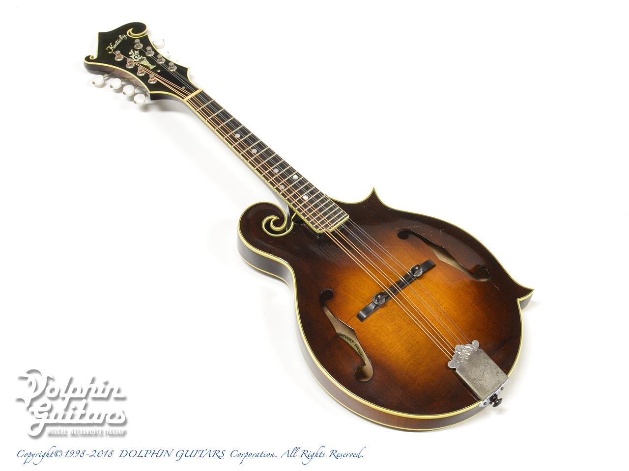KENTUCKY:KM-1000 [16472]|ドルフィンギターズ