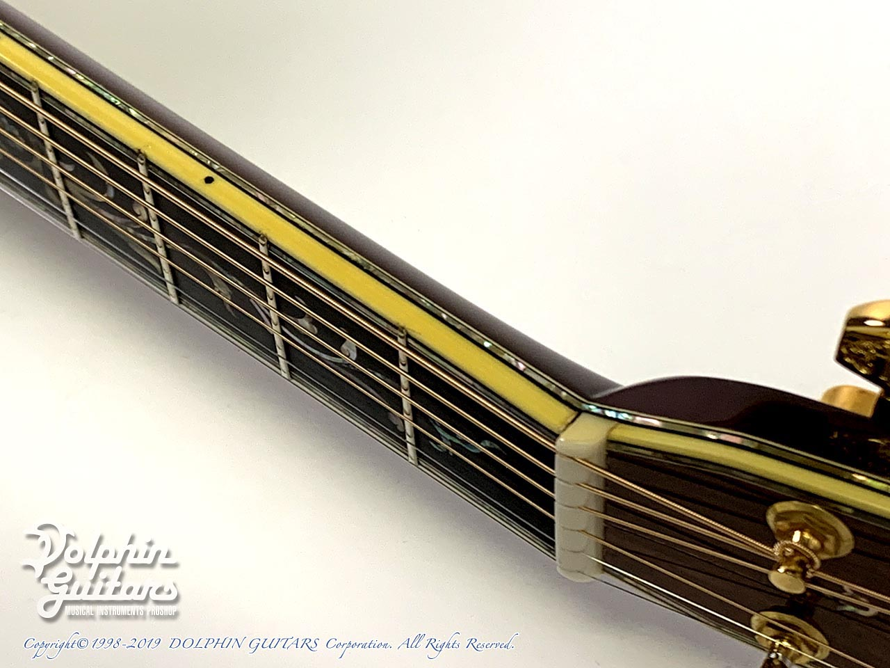 C.F.Martin: D-45  Deluxe Tree of Life (Brazilian Rosewood) (11)