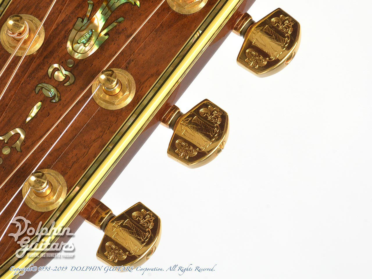 C.F.Martin: D-45  Deluxe Tree of Life (Brazilian Rosewood) (13)