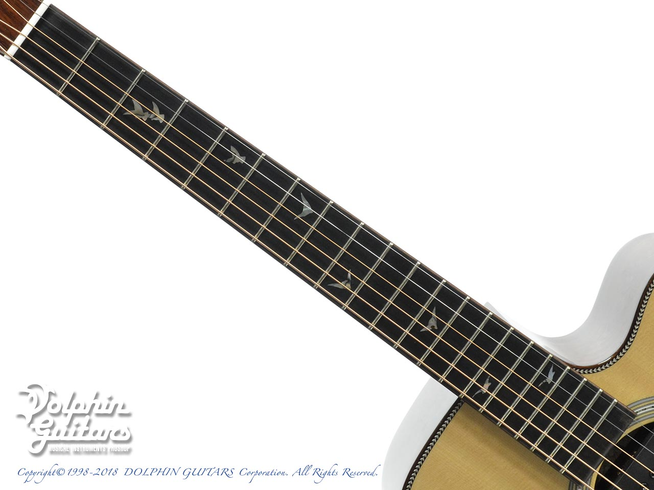 Greven Guitars Japan: Oshio-DC HR (Honduras Rosewood) w/RAPTOR SYSTEM by TRIAL  (4)