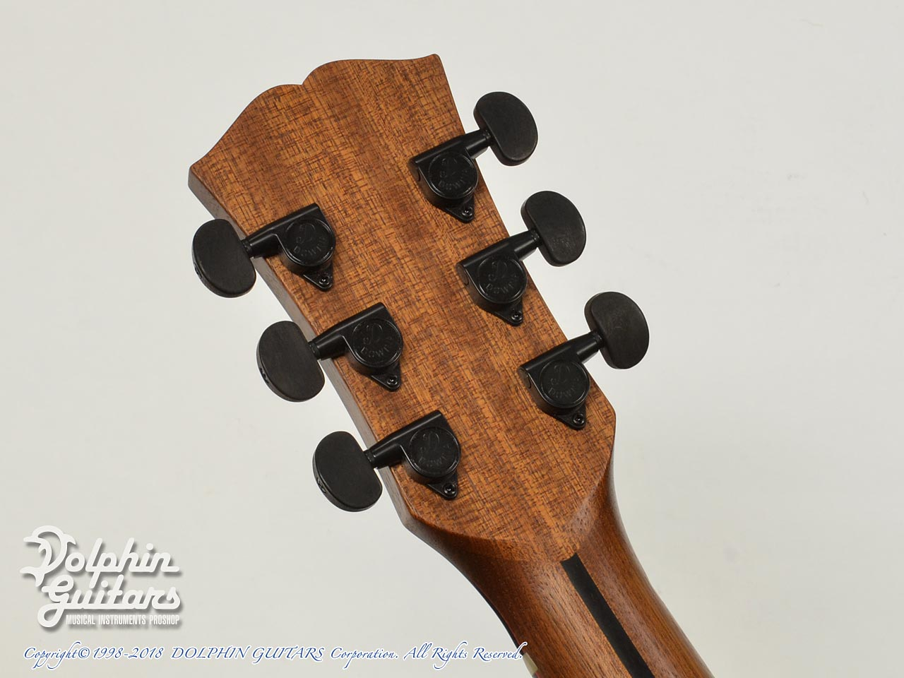 Dowina: AMBRD-GAC-DS (Indian Rosewood) (7)