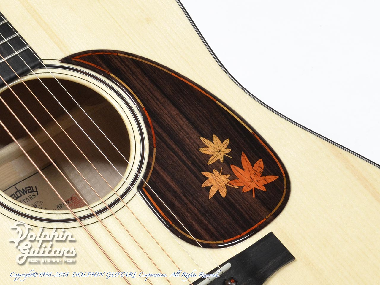 HEADWAY: HD-Autumn Leaves ( Adirondack Spruce & Kaede) (8)