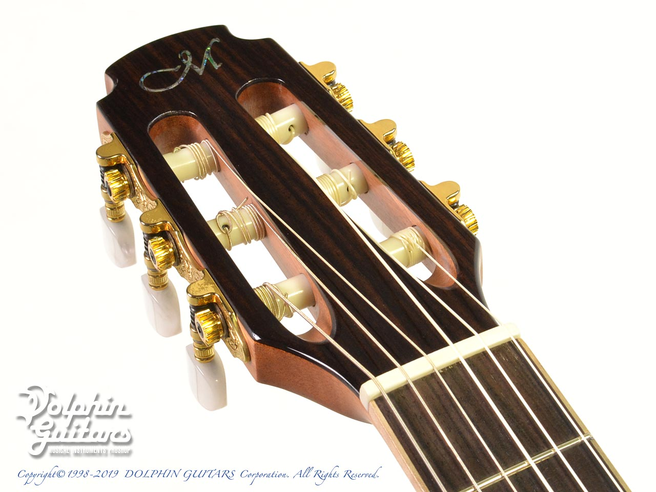 Maestro Guitars: Crossover Series Vera IR CSB GY (Indian Rosewood) (6)