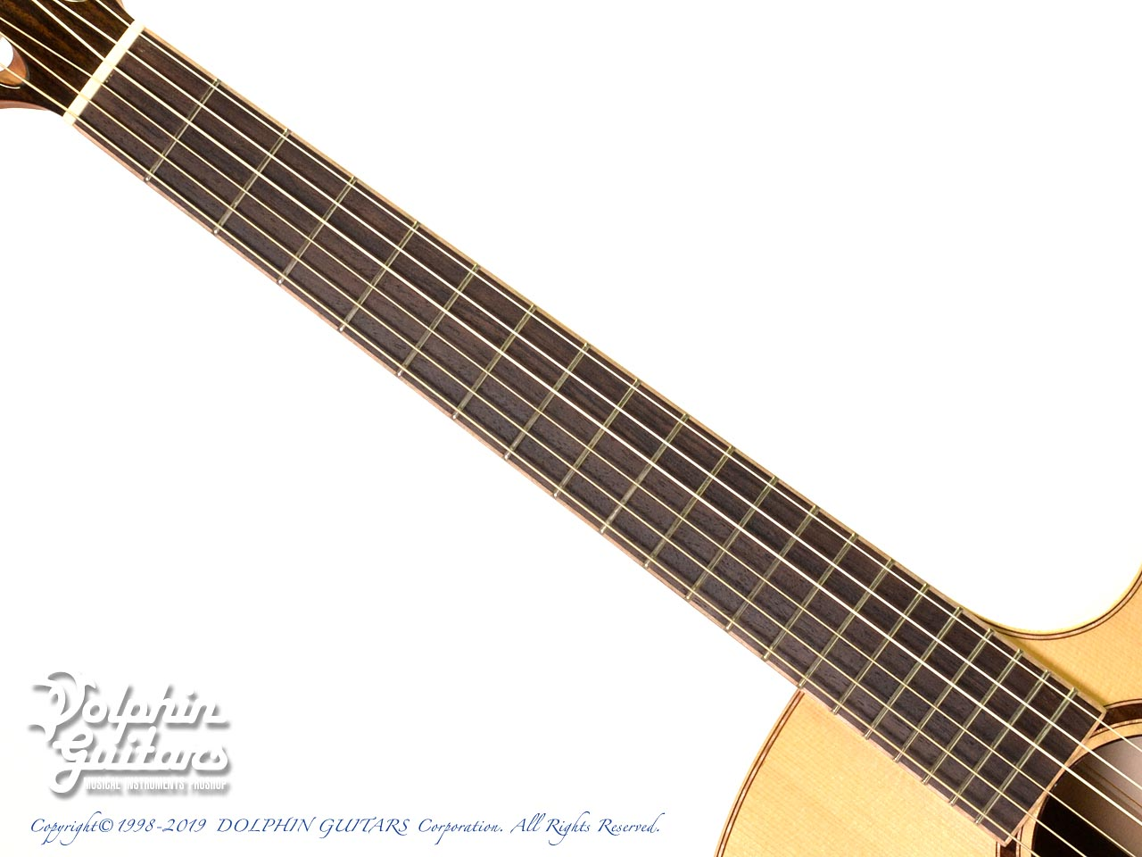 Maestro Guitars: Crossover Series Vera IR CSB GY (Indian Rosewood) (4)