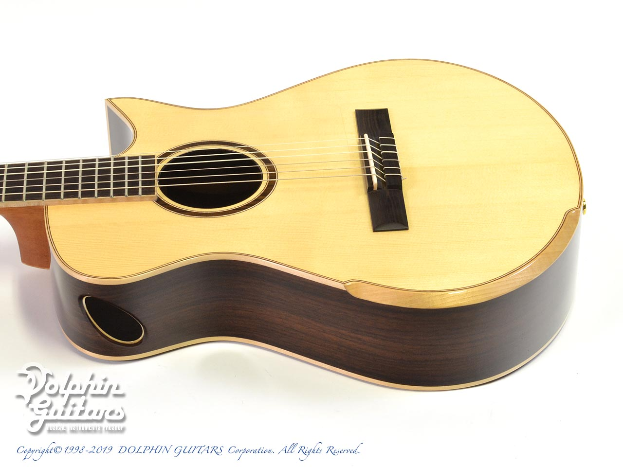Maestro Guitars: Crossover Series Vera IR CSB GY (Indian Rosewood) (2)