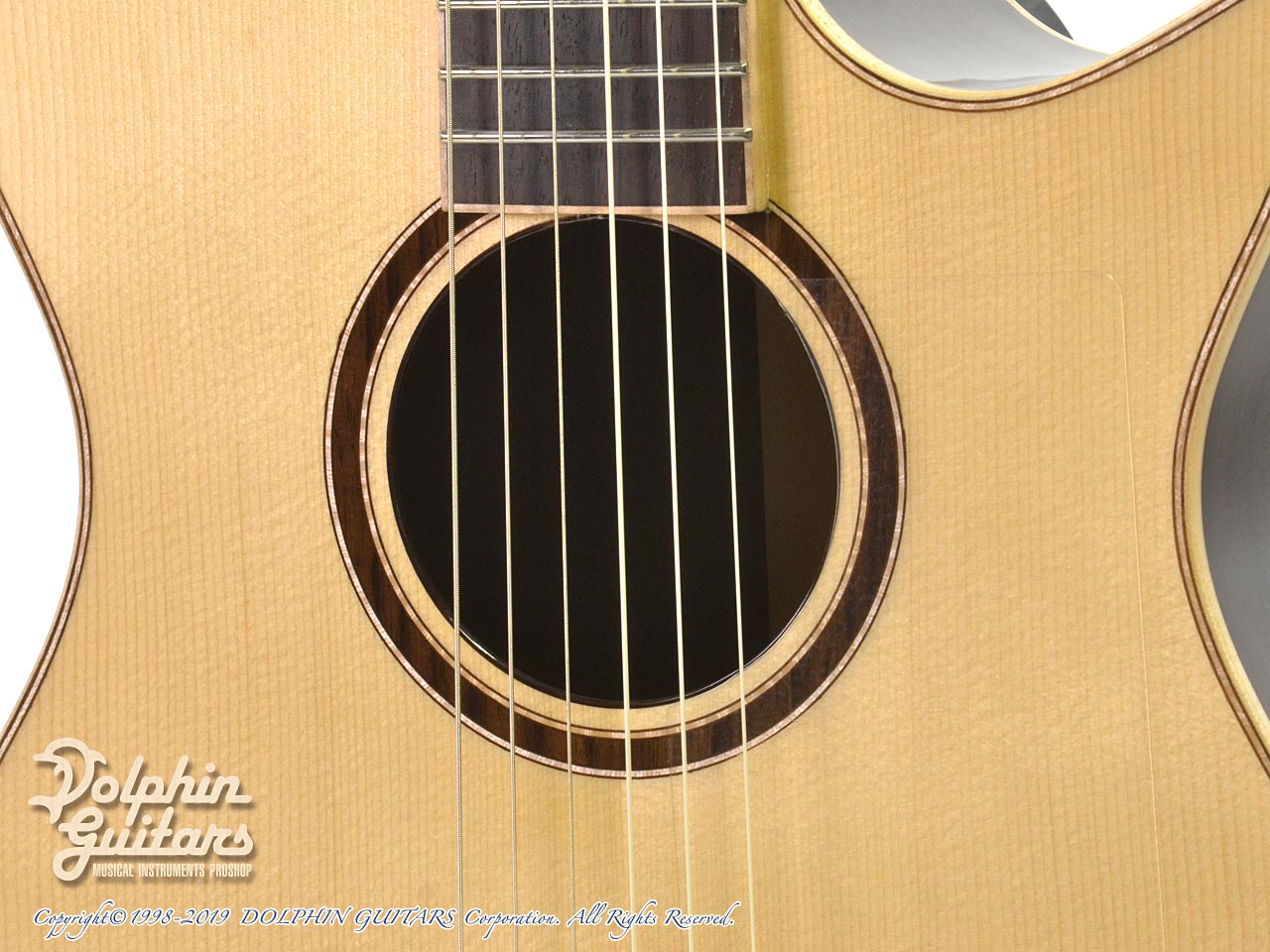 Maestro Guitars: Crossover Series Vera IR CSB GY (Indian Rosewood) (9)