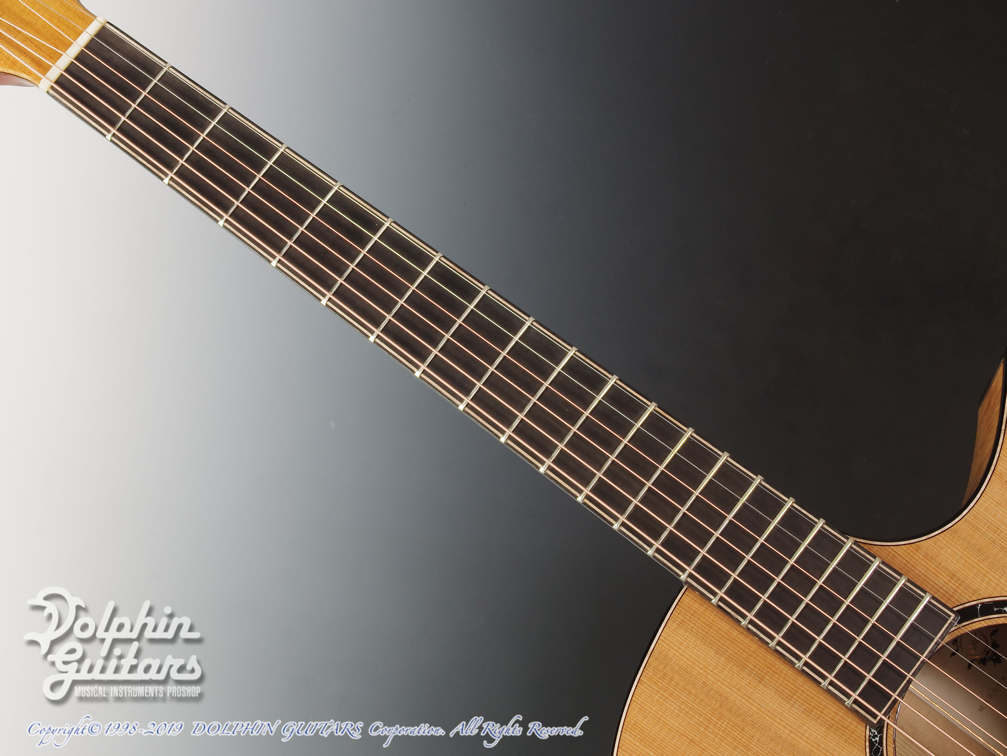 Maestro Guitars: Original Series Raffles FM CSB C (Flame Maple) (4)