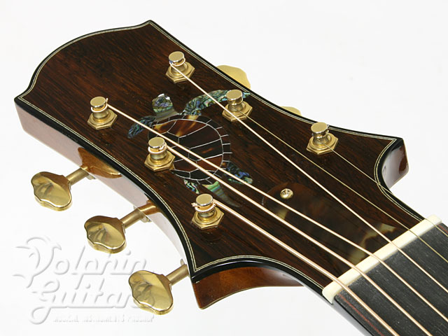 WATER ROAD GUITARS: D-Arte Custom (Jacaranda) (8)