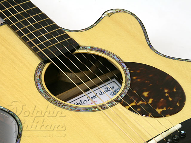 WATER ROAD GUITARS: D-Arte Custom (Jacaranda) (2)