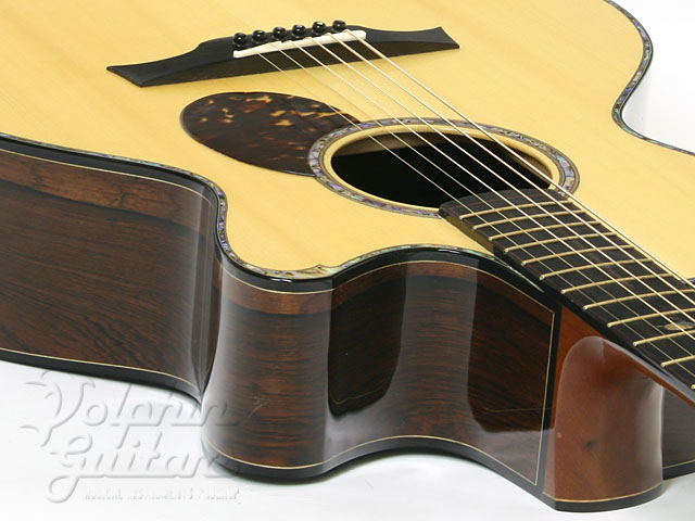 WATER ROAD GUITARS: D-Arte Custom (Jacaranda) (3)