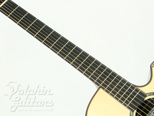 WATER ROAD GUITARS: D-Arte (Jacaranda) (6)
