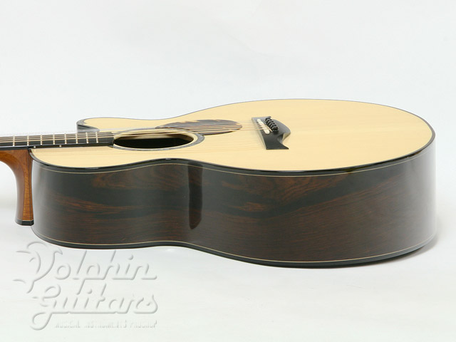 WATER ROAD GUITARS: D-Arte (Jacaranda) (4)
