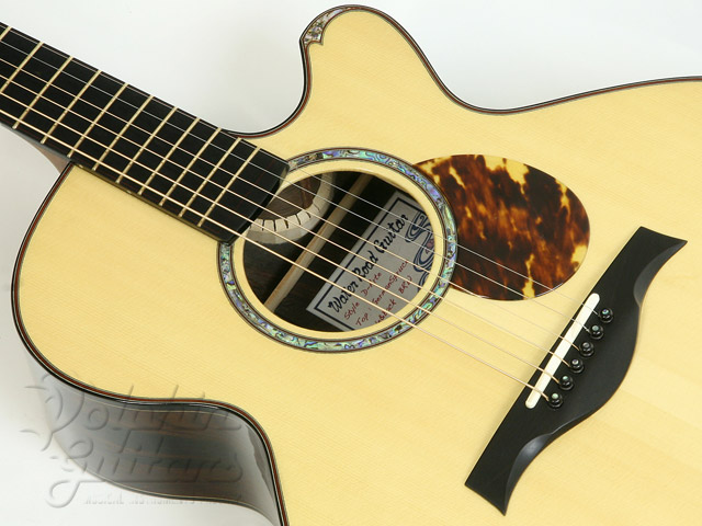 WATER ROAD GUITARS: D-Arte (Jacaranda) (2)