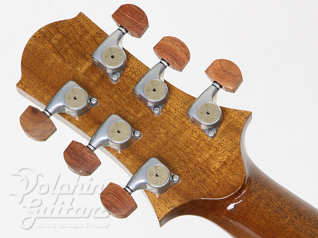 WATER ROAD GUITARS: Couchi (9)