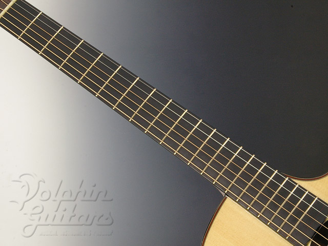WATER ROAD GUITARS: D-Arte (Madagascar Rosewood) (4)