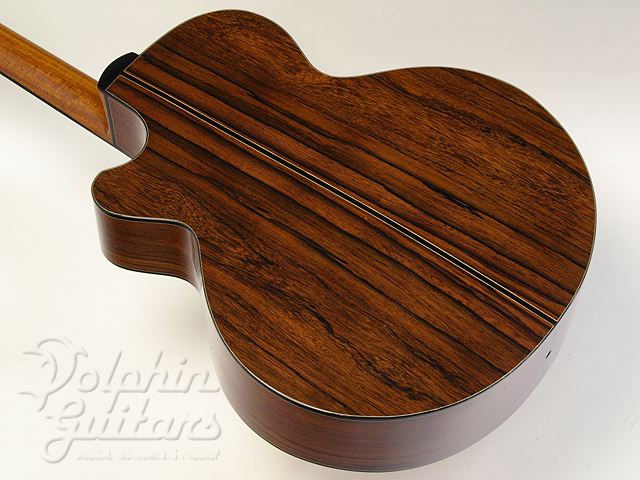 WATER ROAD GUITARS: D-Arte (Madagascar Rosewood) (3)