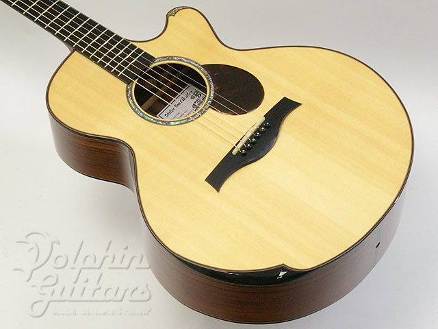 WATER ROAD GUITARS: D-Arte (Madagascar Rosewood) (1)