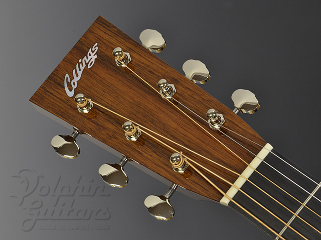 COLLINGS: 0-1 SR (Sacha Rosewood) (6)