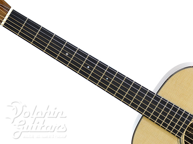 COLLINGS: 0-1 SR (Sacha Rosewood) (4)