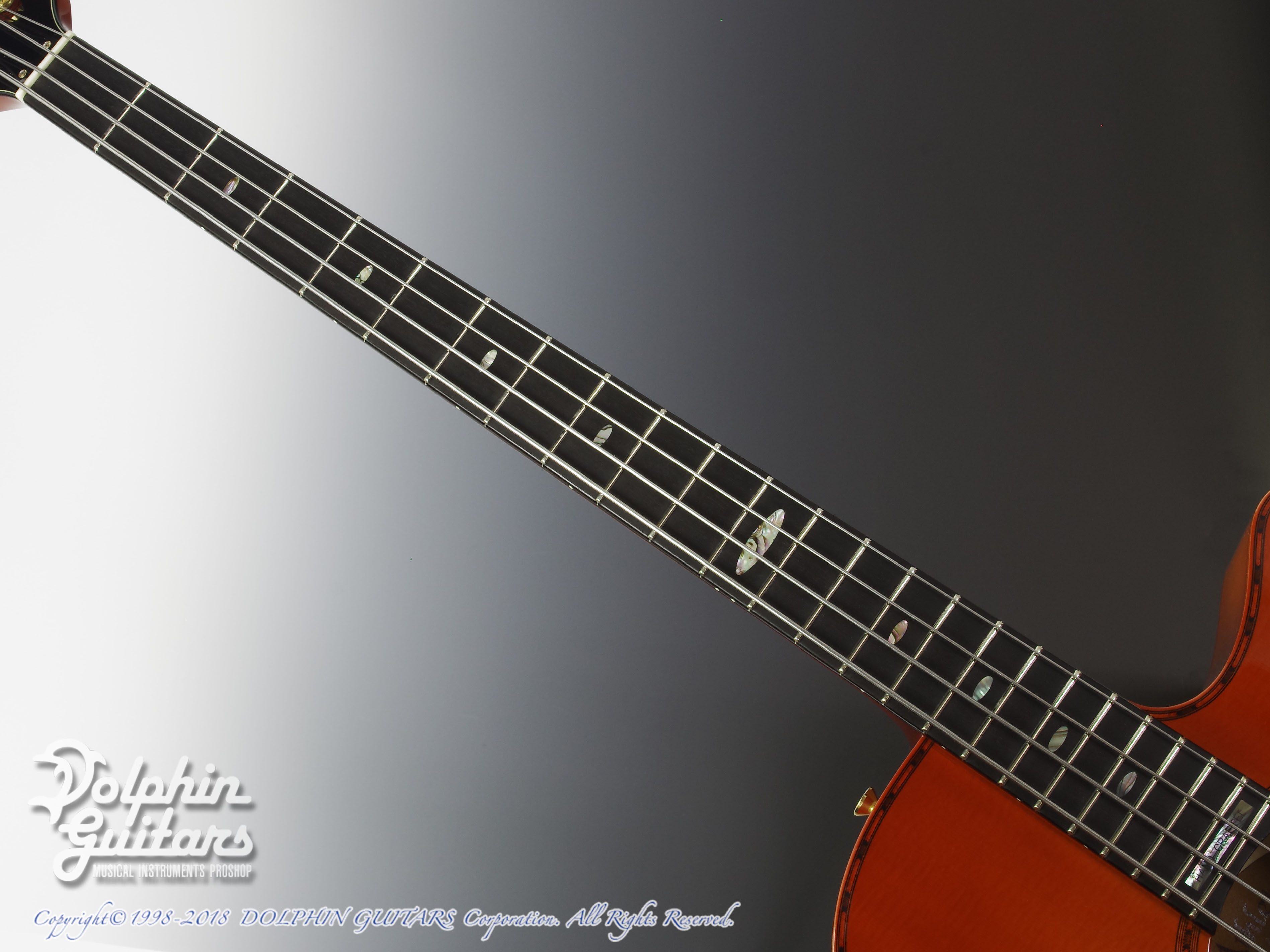 ATHLETE: AX-4 (Acoustic Bass) (4)
