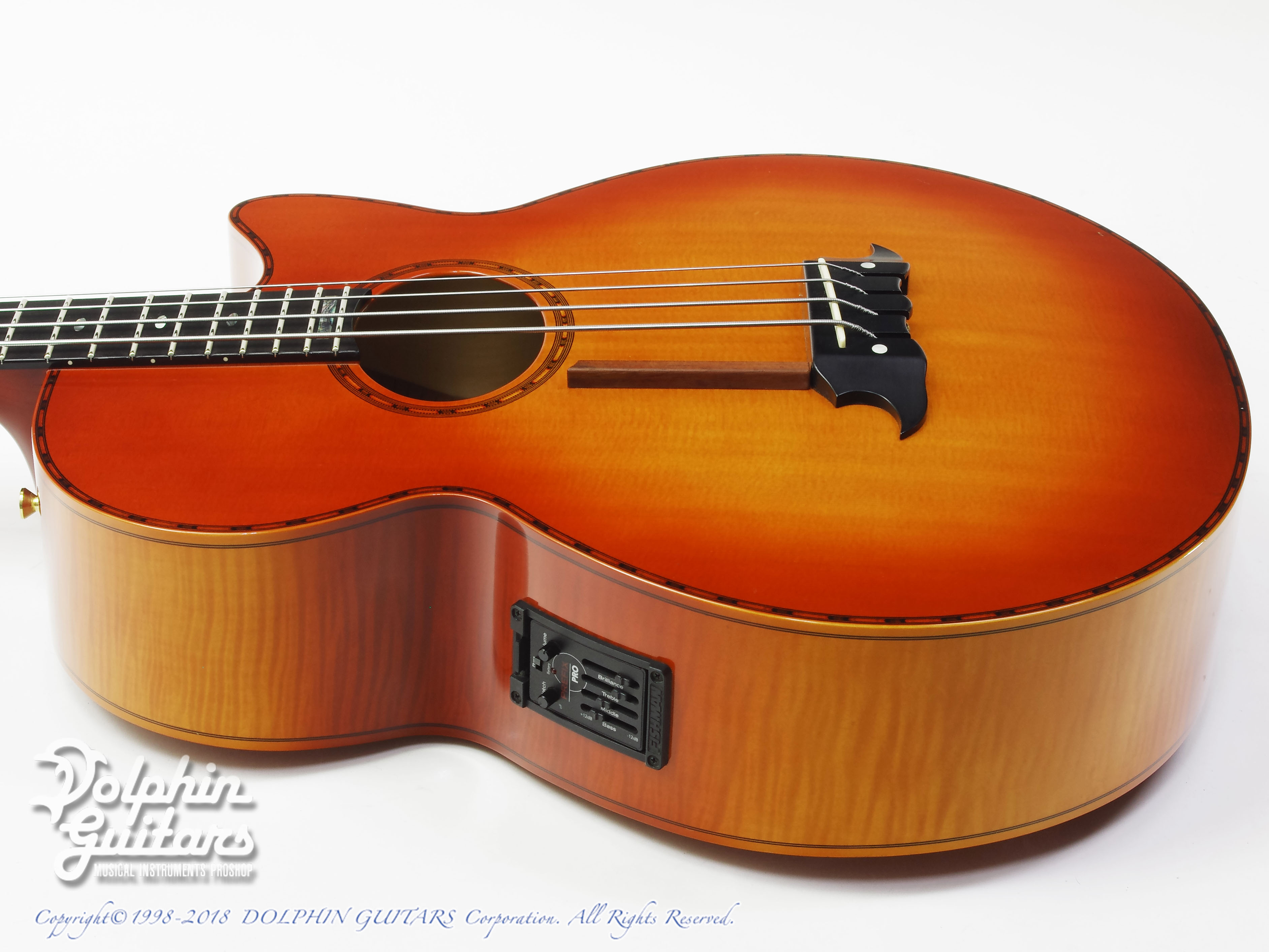 ATHLETE: AX-4 (Acoustic Bass) (2)