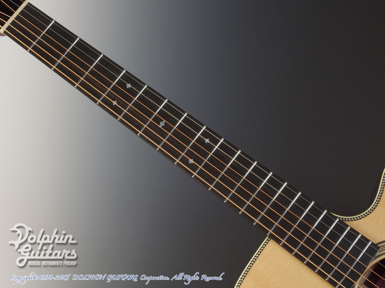 SWITCH: SCD-2HC (Sitka Spruce & Indian Rosewood) (4)