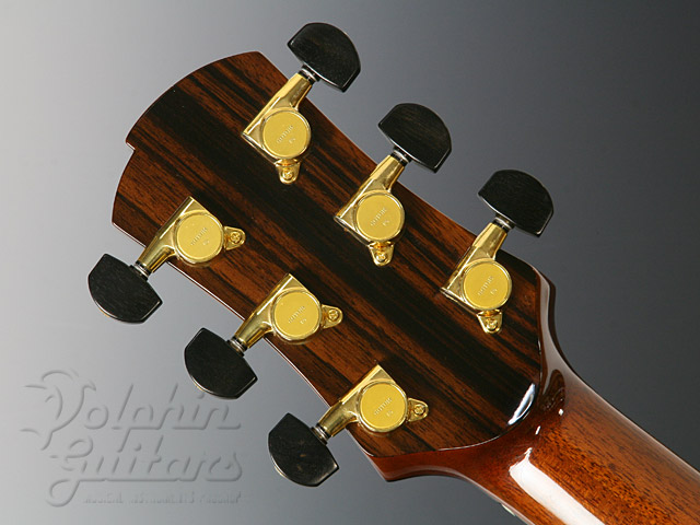 VICTOR GUITARS: Model-ll (Flame Maple) (9)