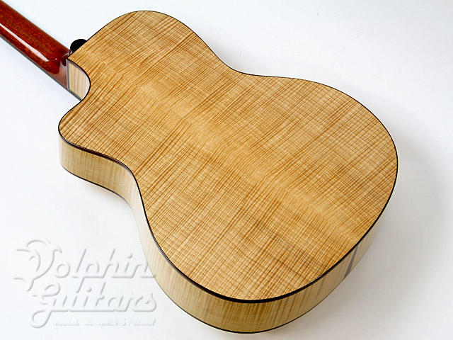 VICTOR GUITARS: Model-ll (Flame Maple) (5)