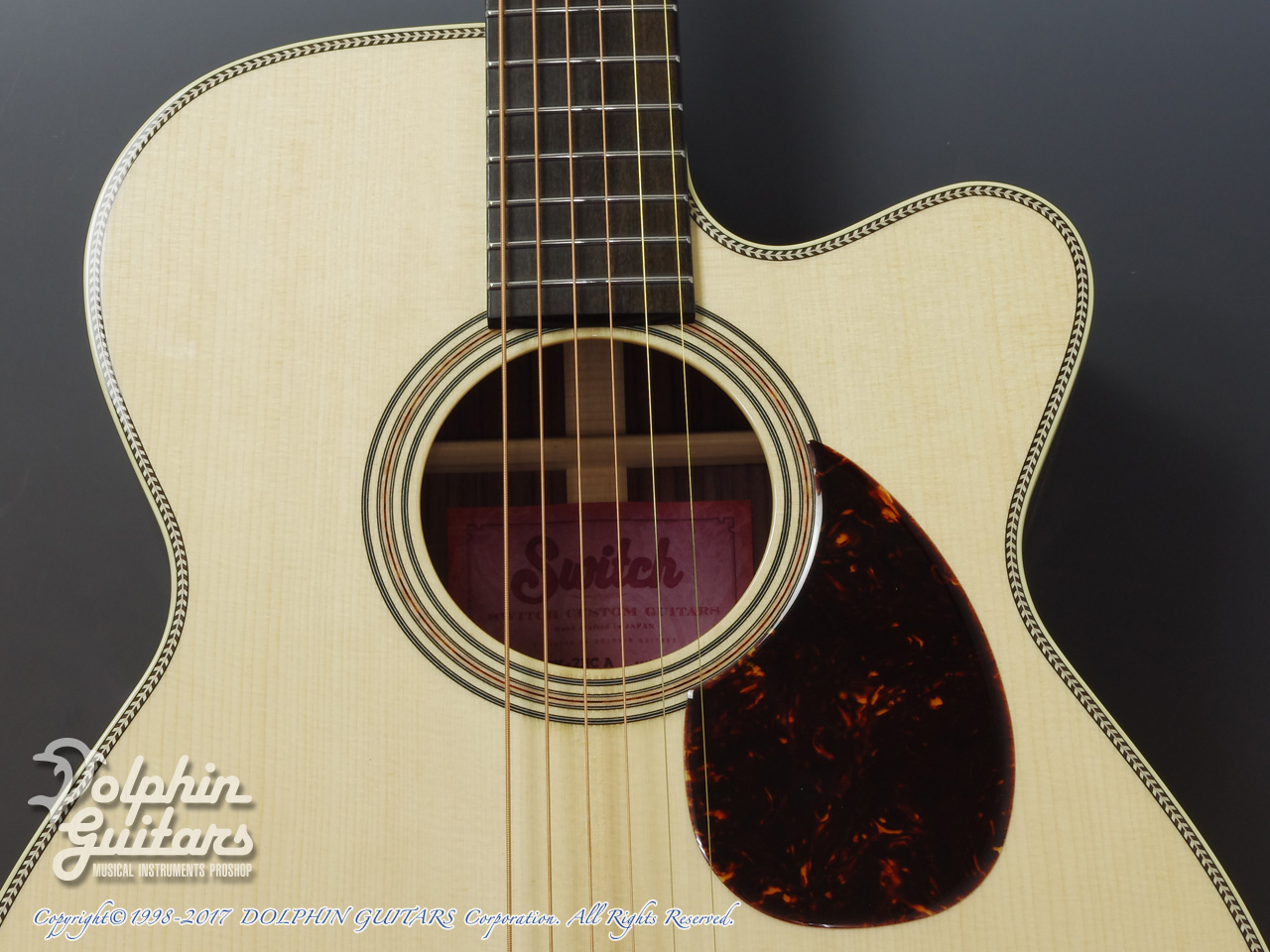 SWITCH: SCOM-2HC A (Adirondack Spruce & Indian Rosewood) (8)