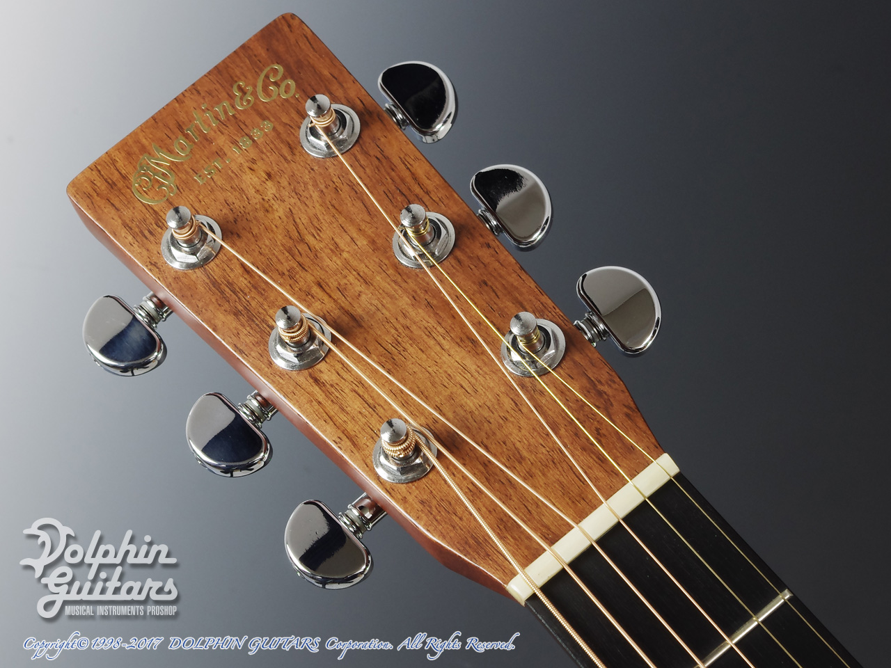 C.F.Martin: HD-28MP (Madagascar Rosewood) (6)