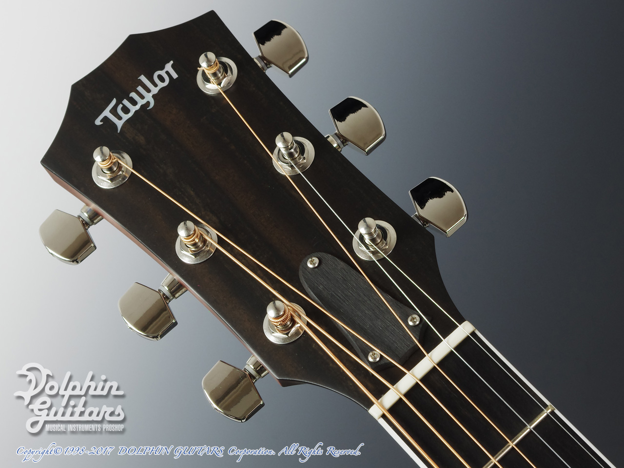 TAYLOR: 312ce SP LTD (6)