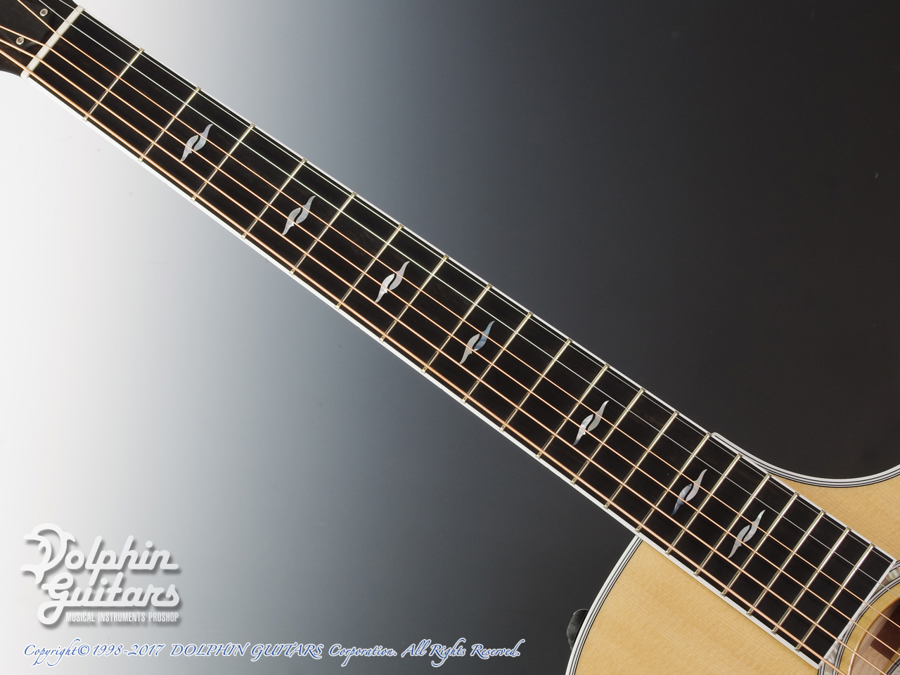 TAYLOR: 312ce SP LTD (4)