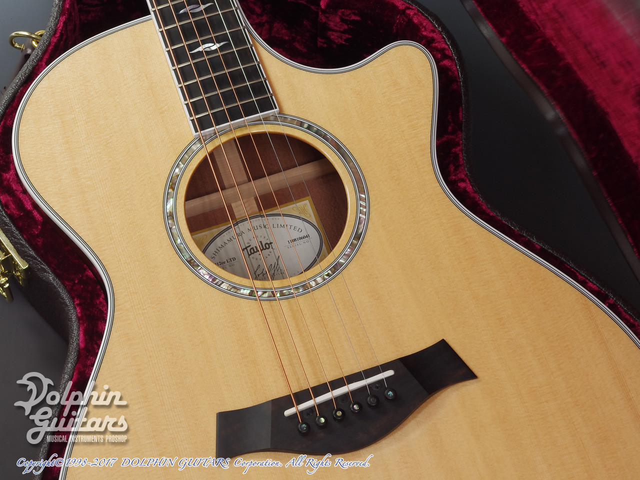 TAYLOR: 312ce SP LTD (8)