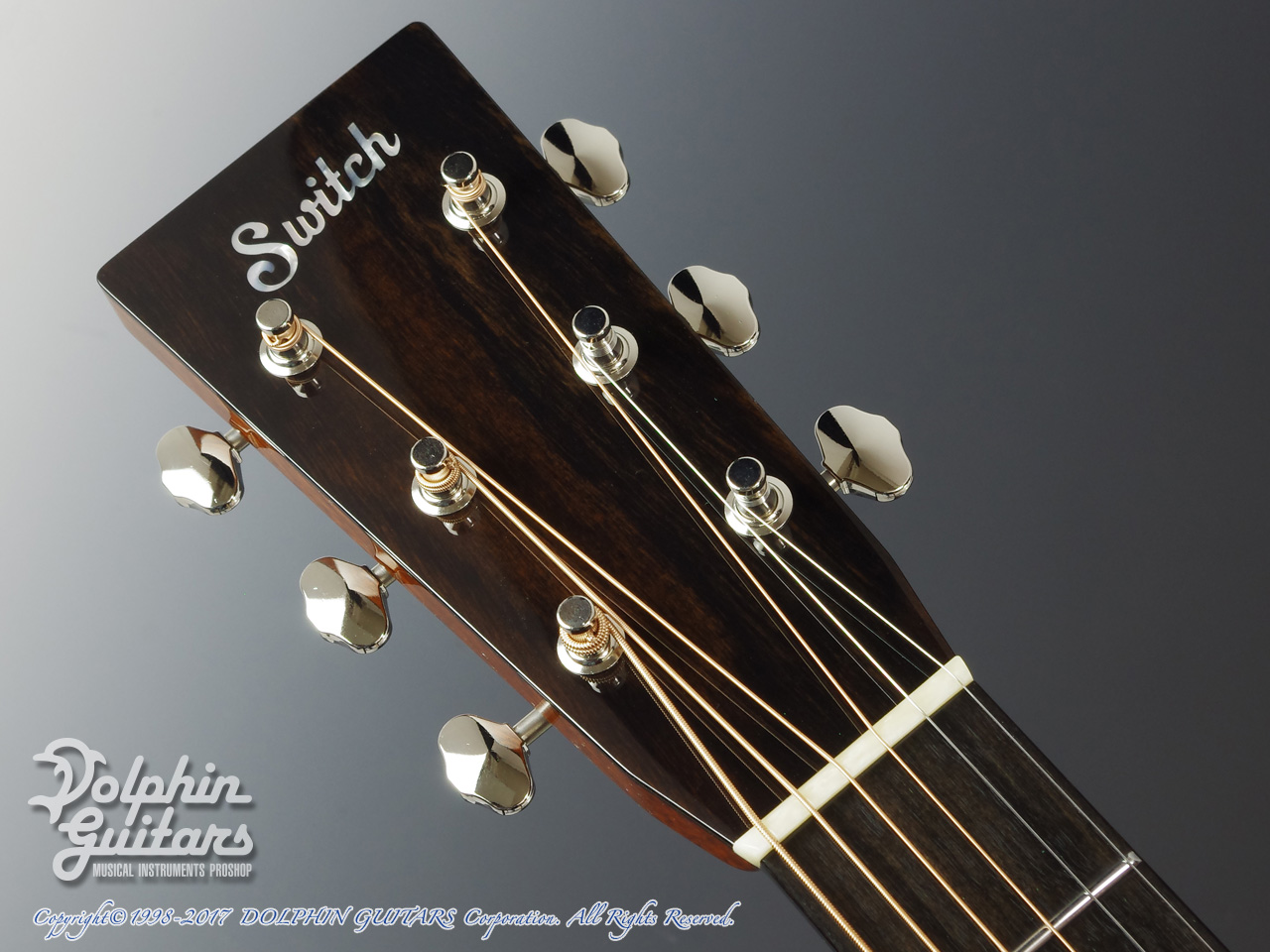 SWITCH: SCD-2H A (Adirondack Spruce & Indian Rosewood) (6)