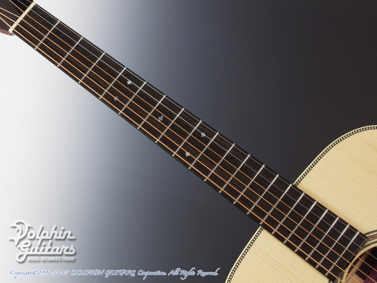 SWITCH: SCD-2H A (Adirondack Spruce & Indian Rosewood) (4)